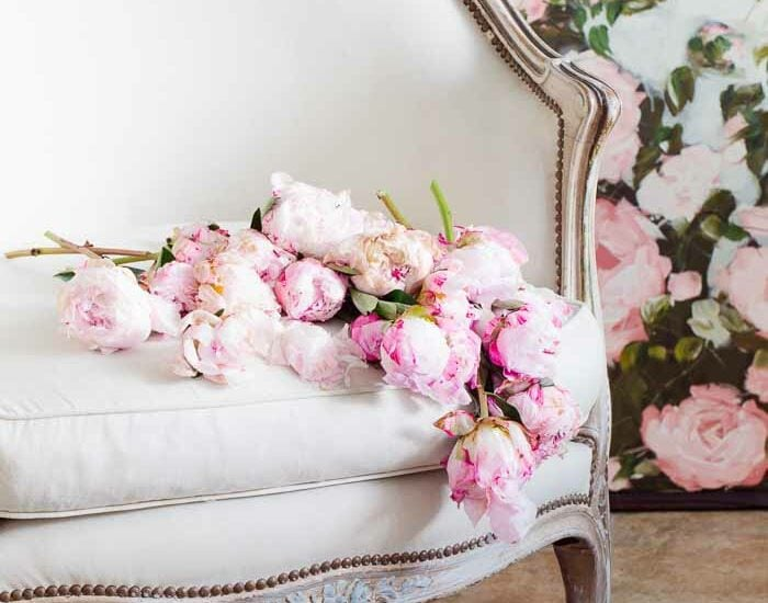 peonies on a French chair shabbyfufu