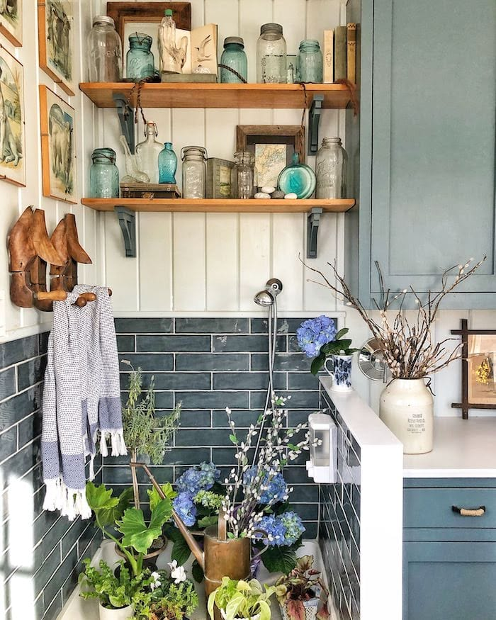 dog washing shower station