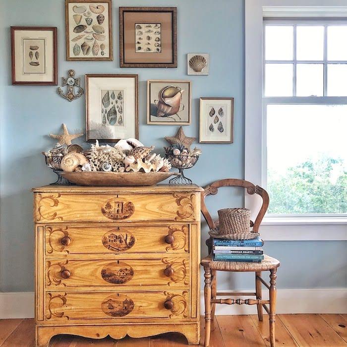 seashell antiques