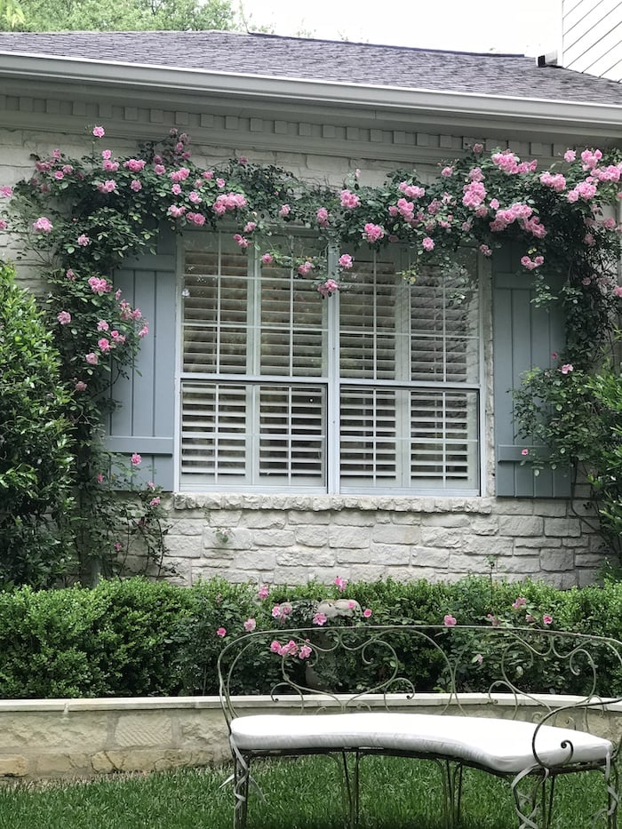 blue shutters designer French chic home