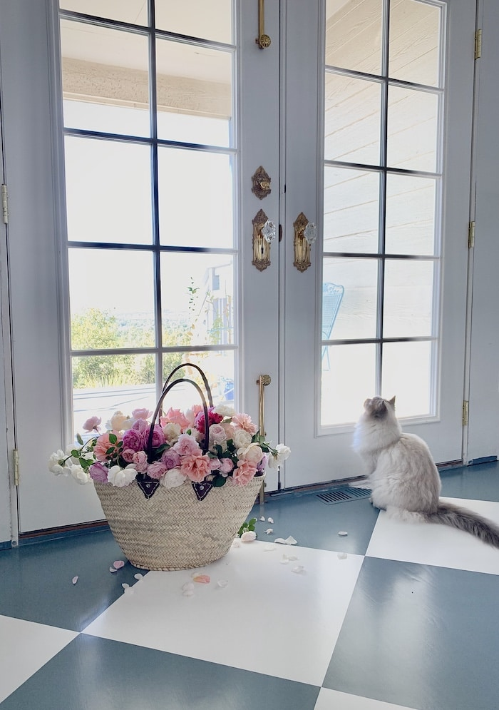 French style home with Ragdoll cat and peonies
