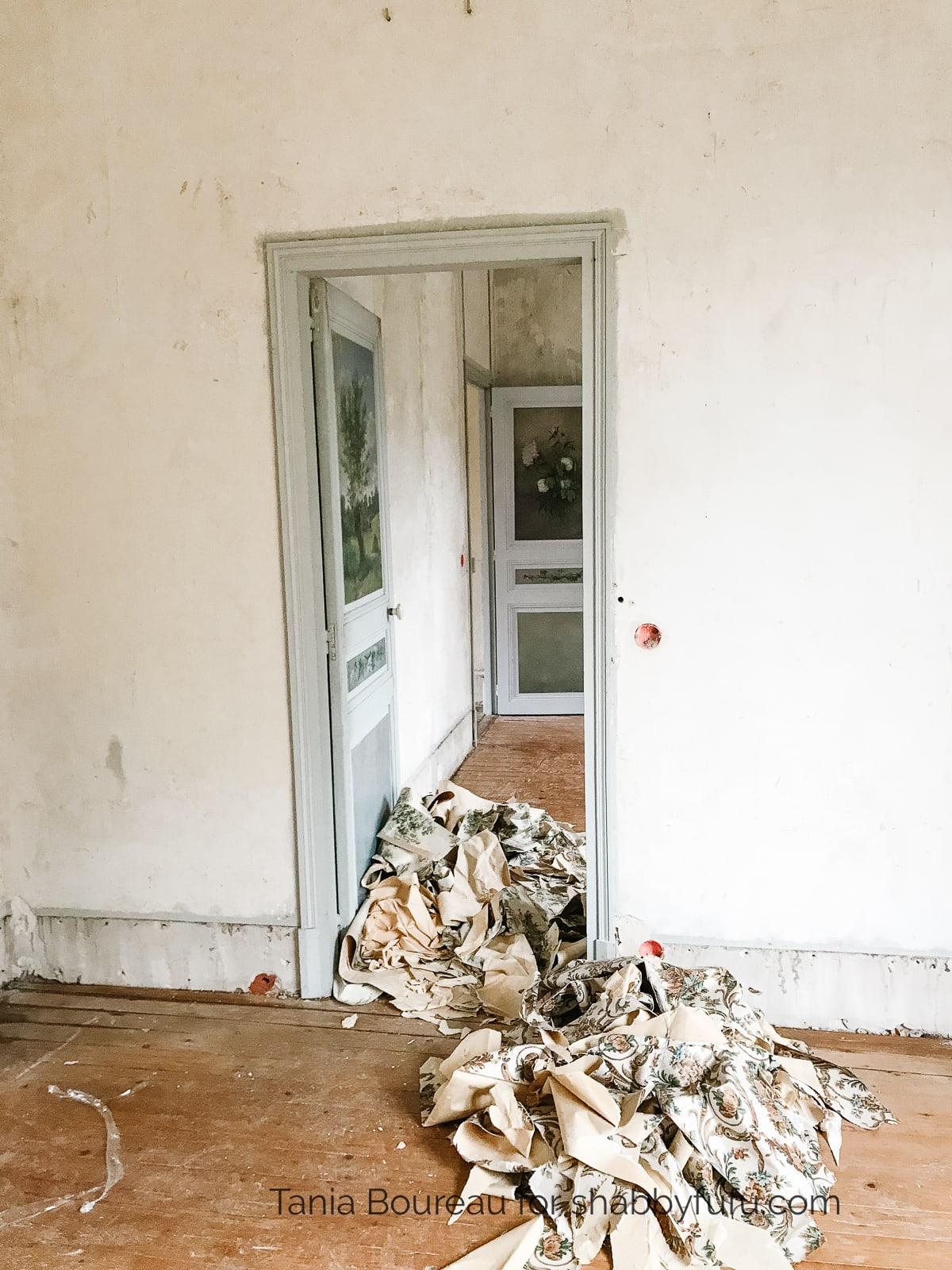 removing wallpaper in an old home in France