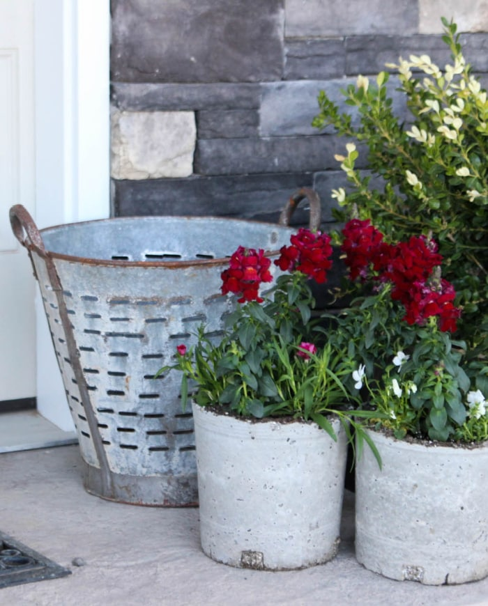 galvanized bucket and white outdoor plant containers with red and white flowers