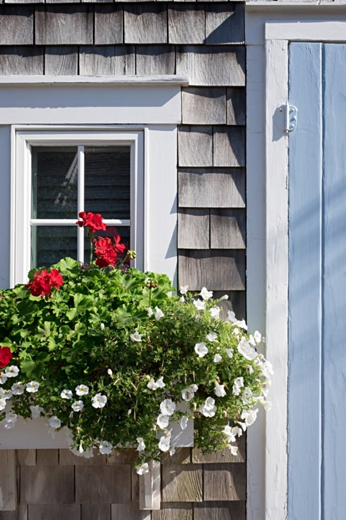 window box on window on house with gray shingles and a partial view of a blue door