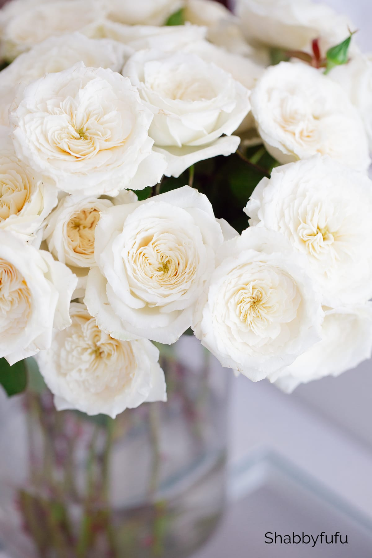 spring styling with white roses