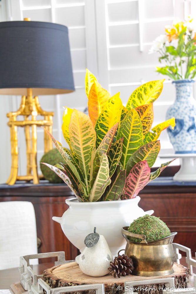 colorful fall leaves in a white urn centerpieces in front of a sideboard with a brass lamp