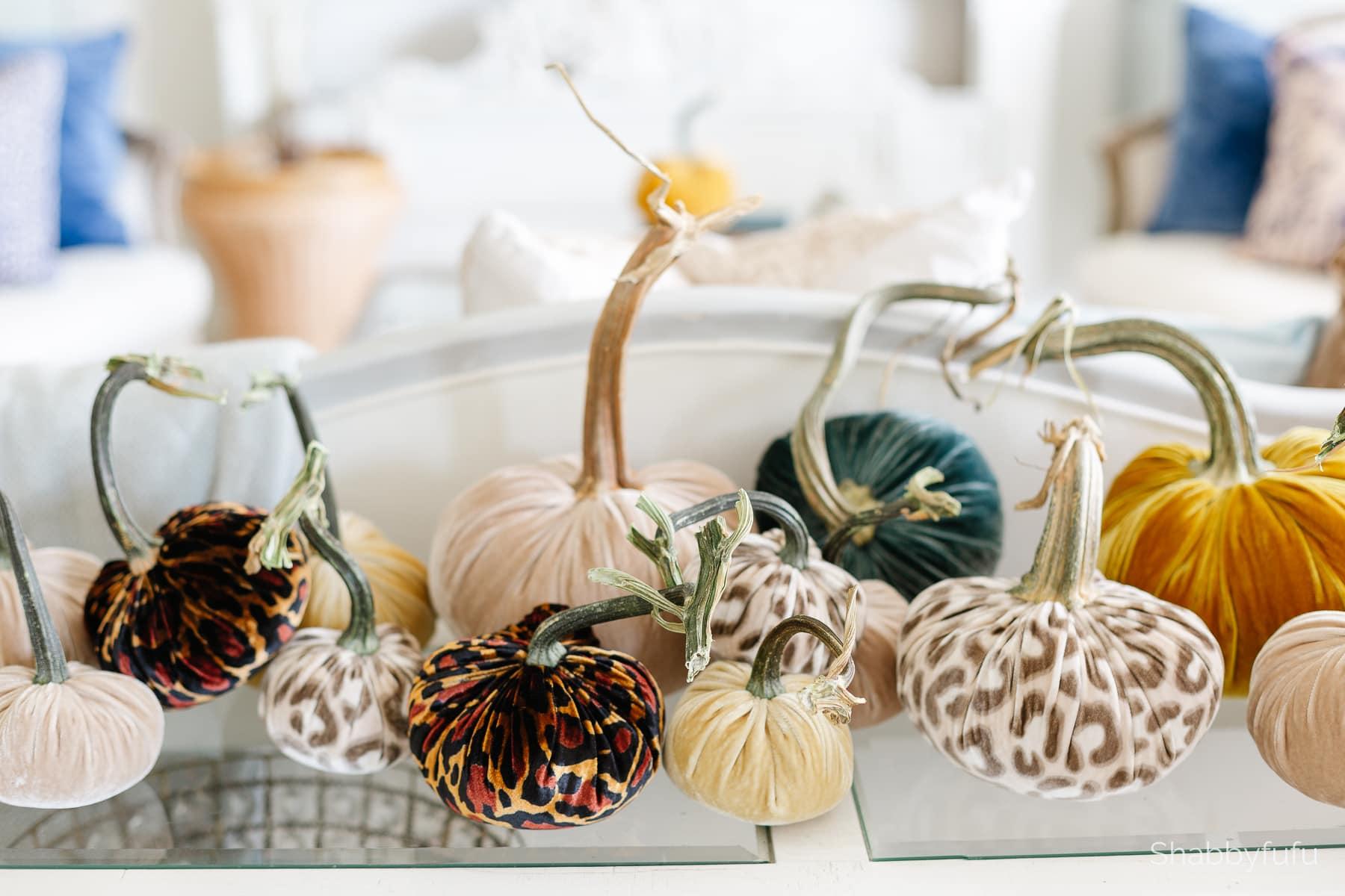 luxe velvet pumpkins for fall