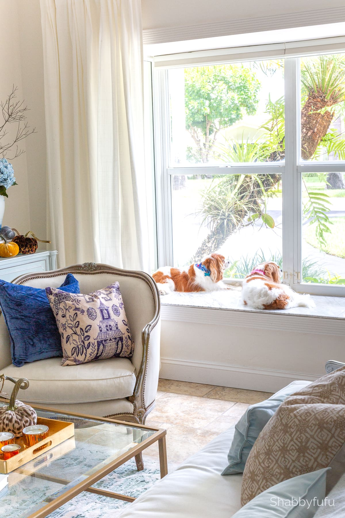 luxe fall decorating with velvet with cavalier spaniels